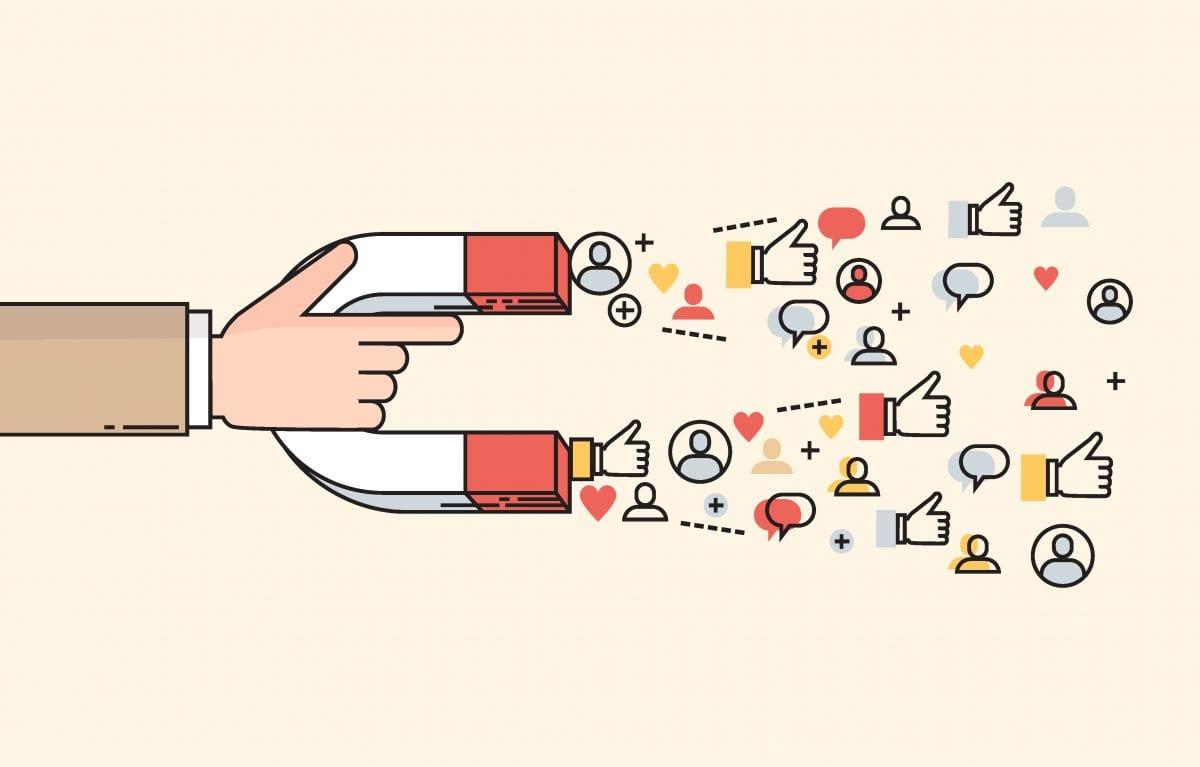 social media magnet