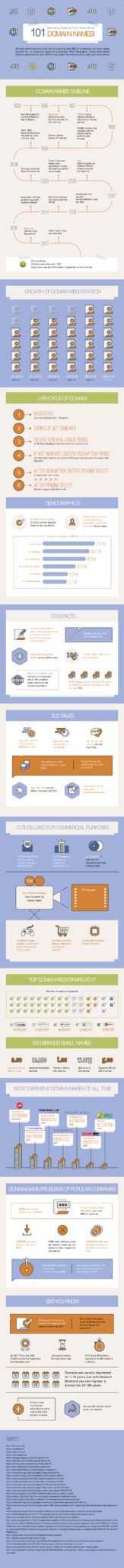 domain name infographic